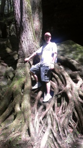 Nick on a cool tree