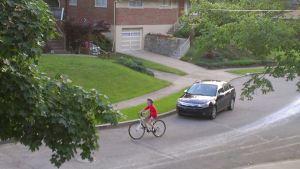 joey bike
